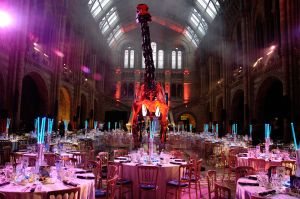Photography for corporate event set-up at the Natural History Museum
